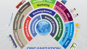 Infographics Organization Structures PT Indoprimatrans